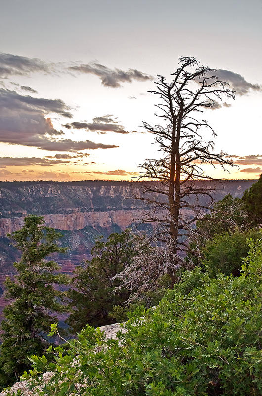 The Grand Canyon Sunset
