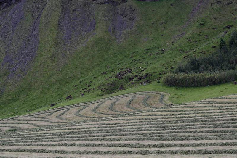 Road 1 to Kirkjubaejarklaustur