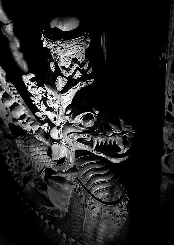 Black&White Dragon
