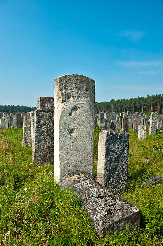 Jewish Cemetery In Brody