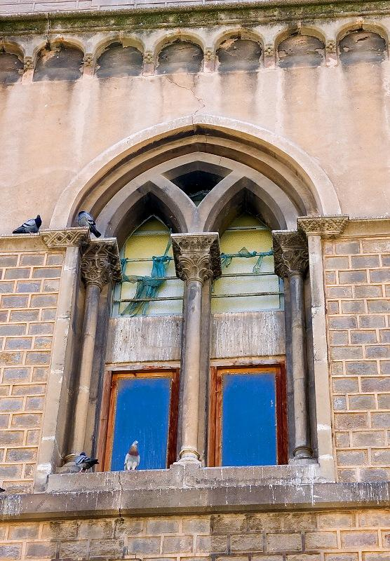 Window With Pigeons