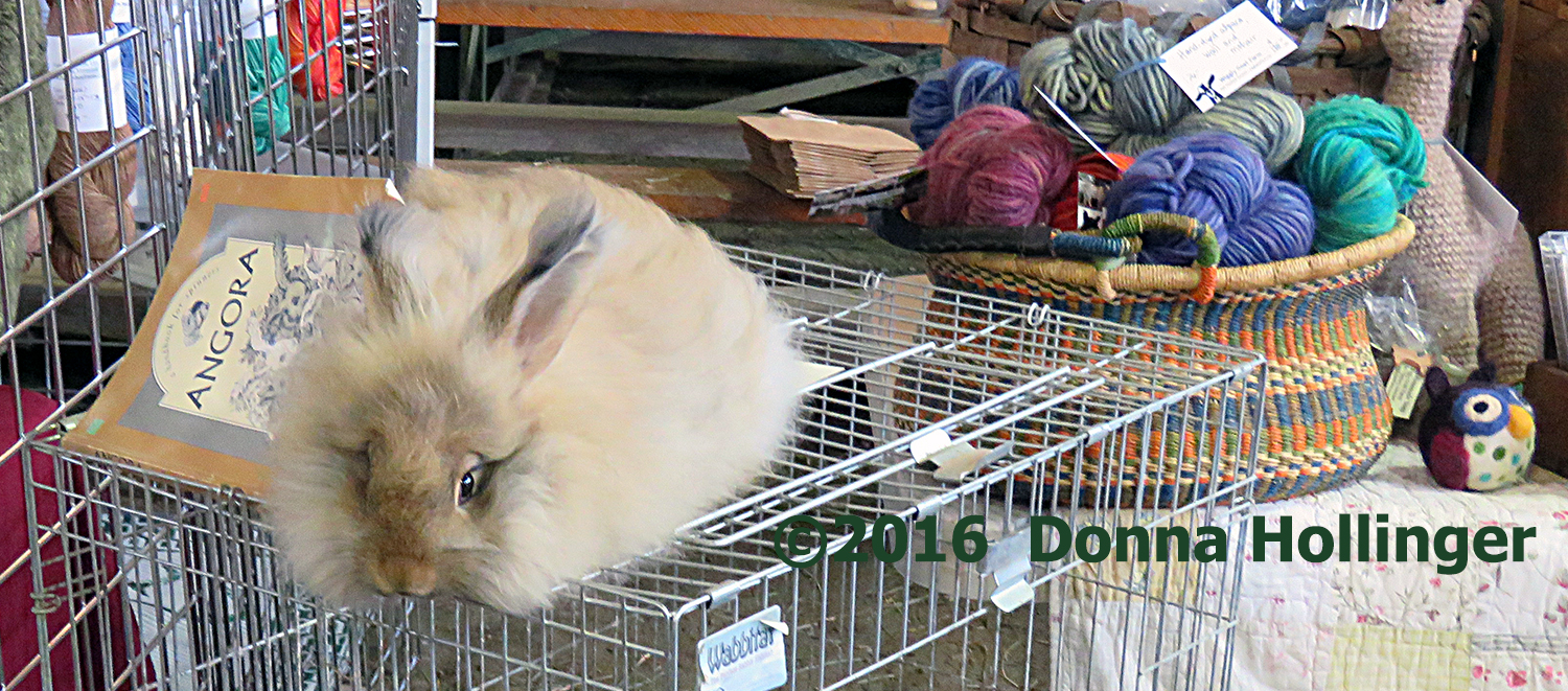 (angora)Rabbit Fur makes yarn