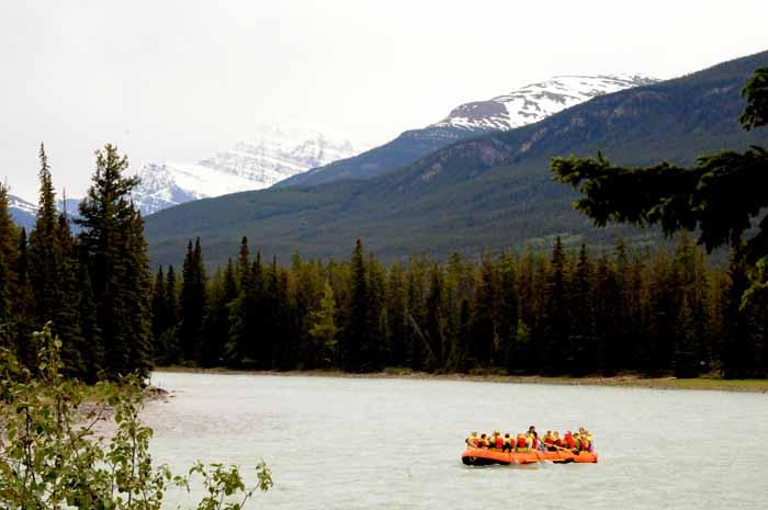 Athabasca River tour,Jasper NP