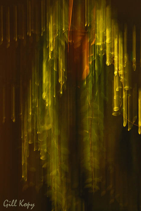 Falling light.jpg