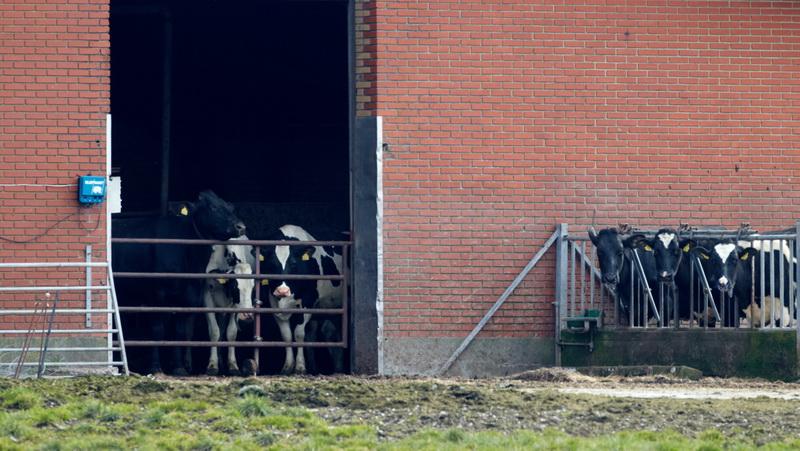Arenborg, CR6F6661, 29-03-2014.jpg