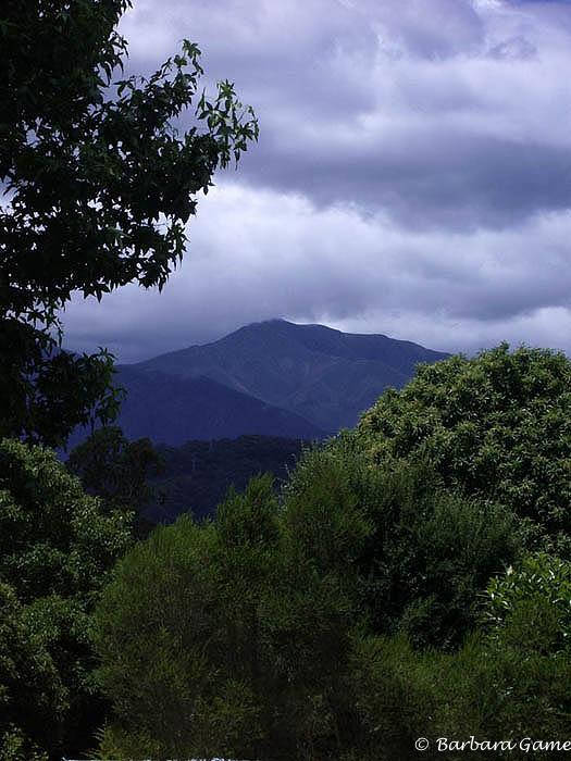 Mt Bogong view.