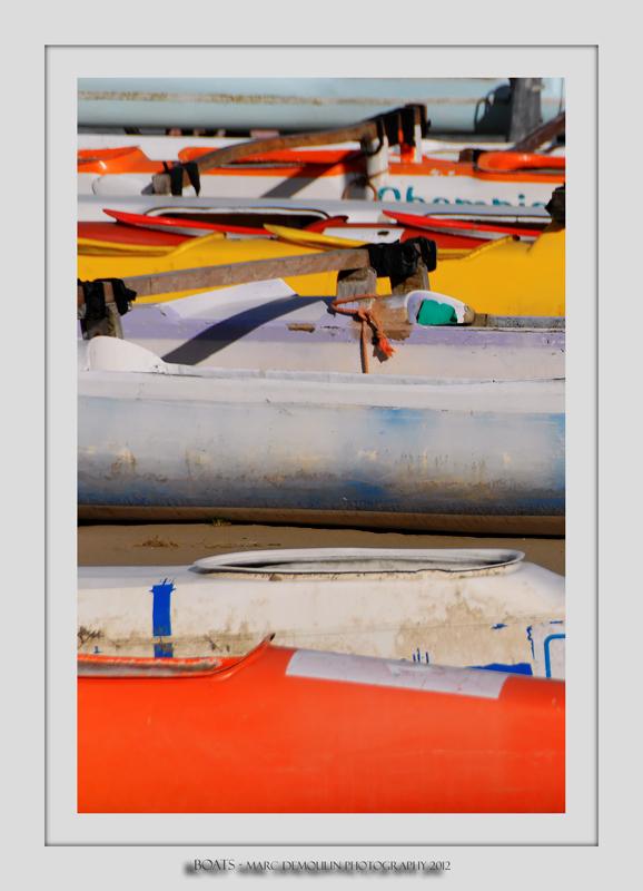 Boats 81 (Saint-Valery-sur-Somme)