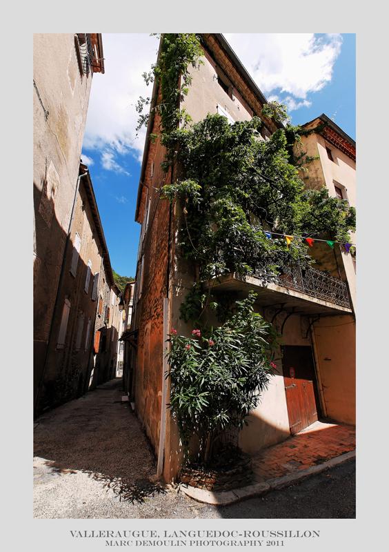 Languedoc-Roussillon, Valleraugue 1