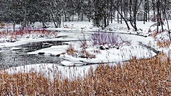 Wintry Otter Creek P1040086