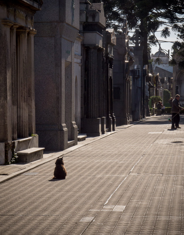 20130617_Buenos Aires_0109.jpg