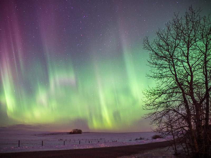 20140219_Northern Light_0021.jpg