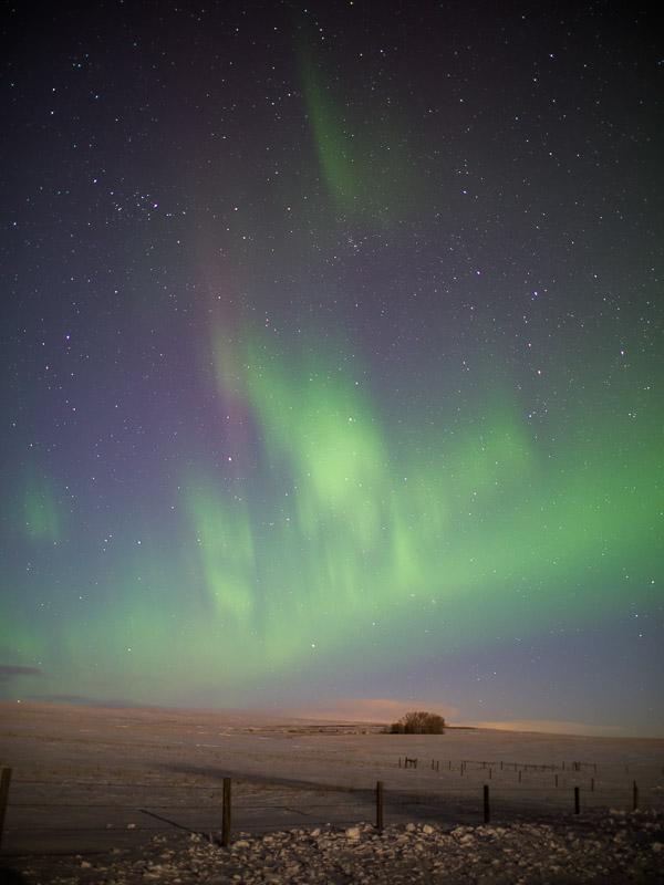 20140220_Northern Light_0071.jpg