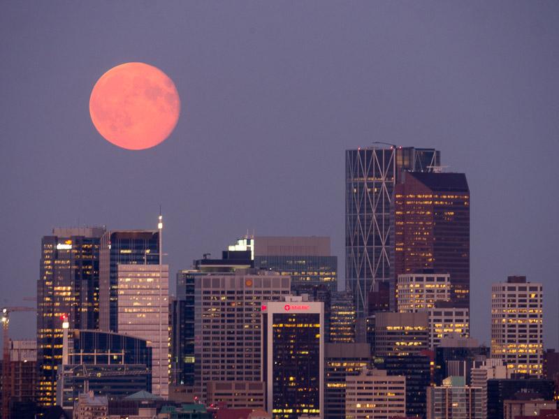 20140811_Calgary_0025.jpg