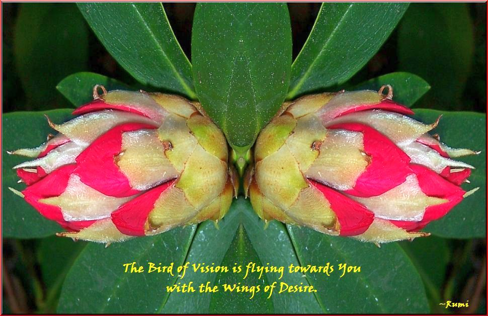 Flying Towards You