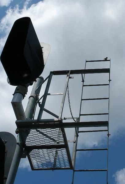 Signal tower as bird perch