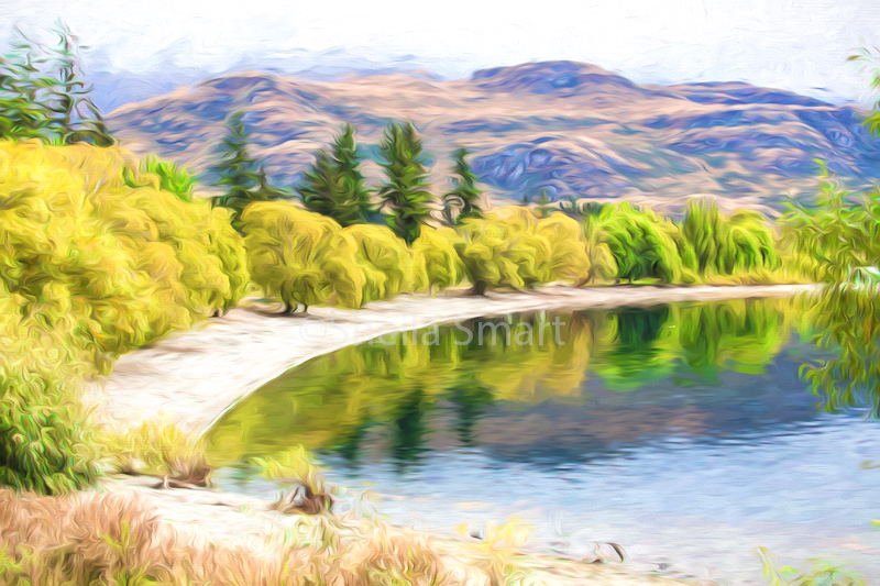 Glendhu Bay, Lake Wanaka, New Zealand