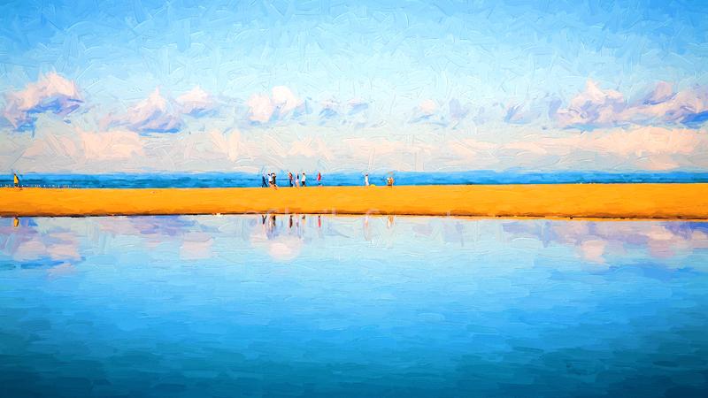 Narrabeen dunes