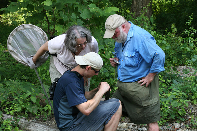 Lynn and Dave watching Dan examine the wood turtle just before it bit him.