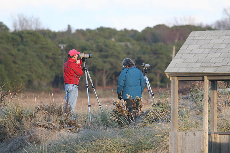 Michael and Lynn scoping out a marsh