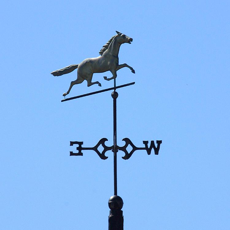 Horse - Nashua, N.H.