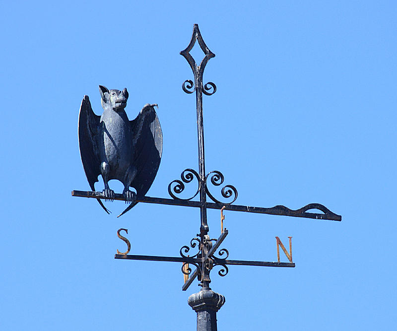 Bat on a schoolhouse in Townsend, Ma.