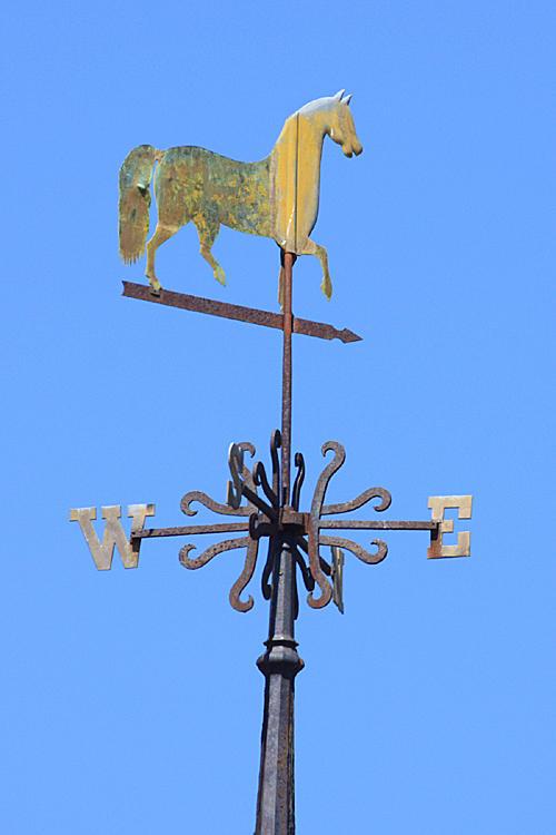 Horse - Townsend, Ma.