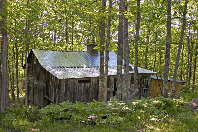Sugar House in Summer