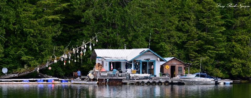 Cabin 9, Julia Passage, Alma Russell Island, Barkley Sound, Vancouver Island, Canada