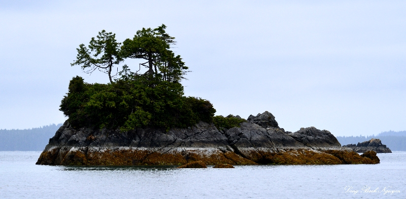 Broken Group Island, Barkley Sound, Vancouver Island, Canada