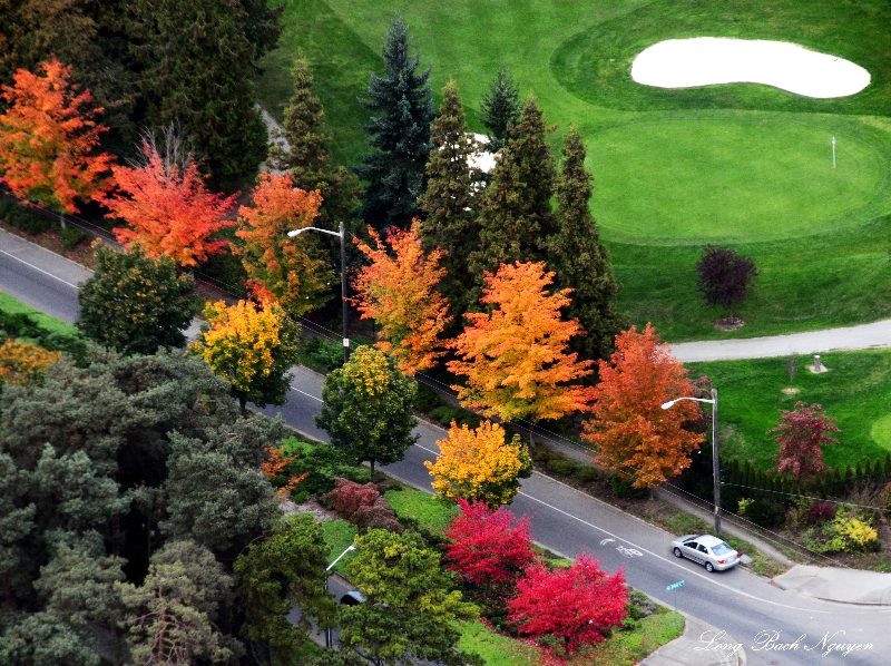 Fall colors over Jefferson Golf Course, Beacon Hill, Seattle