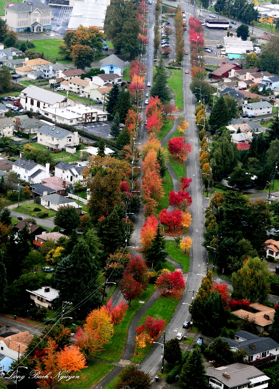 Beacon Avenue, Seattle, Washington