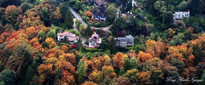 Affluent neighborhood in fall Seattle