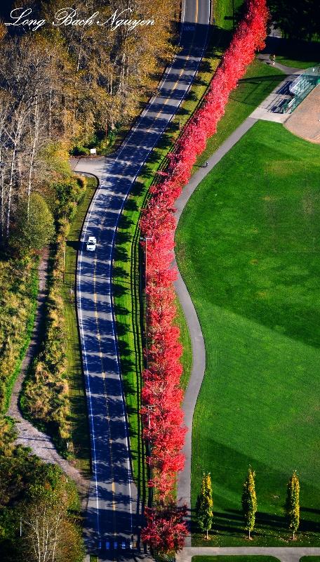 Centennial Park, SE Park St, Snoqualmie, Washington