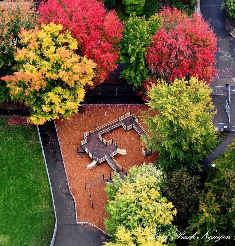 playground Broadway neighborhood, Seattle