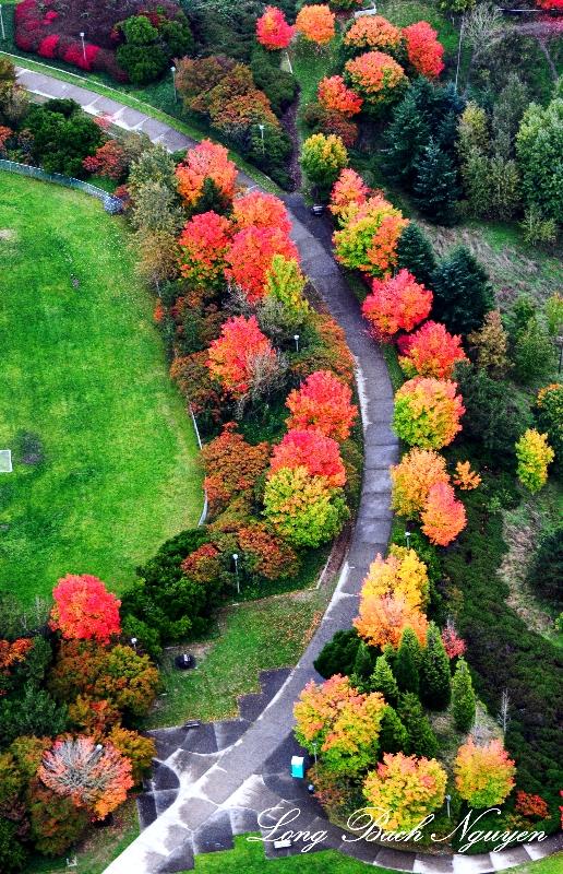 Mt Baker Ridge Viewpoint Park, Seattle, Washington