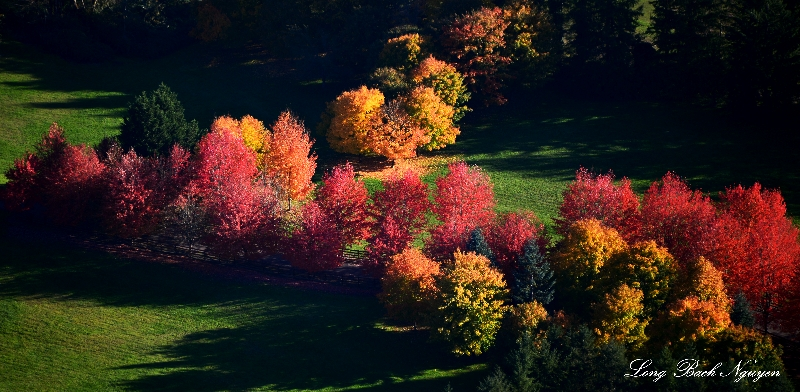 Beautiful fall foliage North Bend Washington