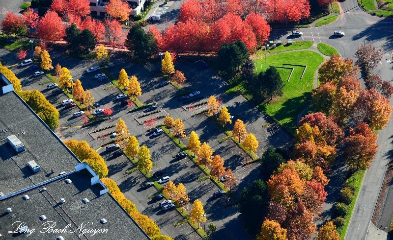 business parking lot