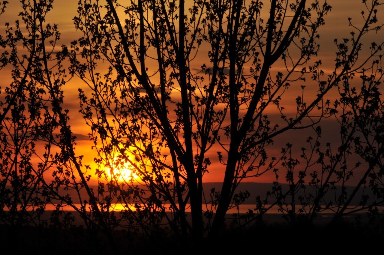 Pocatello Spring Sunset 11 May 2013 _DSC0684.jpg