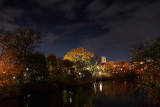 Guelph at Night r.jpg