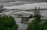 Port McNiell 12.jpg