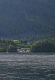 Port McNiell 18.jpg