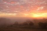 Lillydale Sunrise