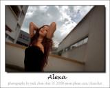 Alexa 33