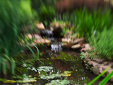 Lensbaby to G1/3