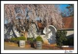 Westbend Winery