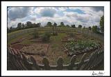 2306 FE garden copy.jpg