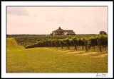Raylen Winery