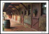 Calf Barn Stalls