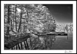 Lake Hickory Docks/Winter