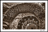 Orchid House Arches, Toned